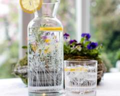 Floral Glass Tumbler and Carafe
