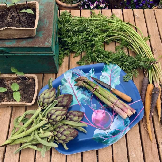 Gardeners Tray - Kohlrabi Design