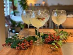 Gin_cocktail
