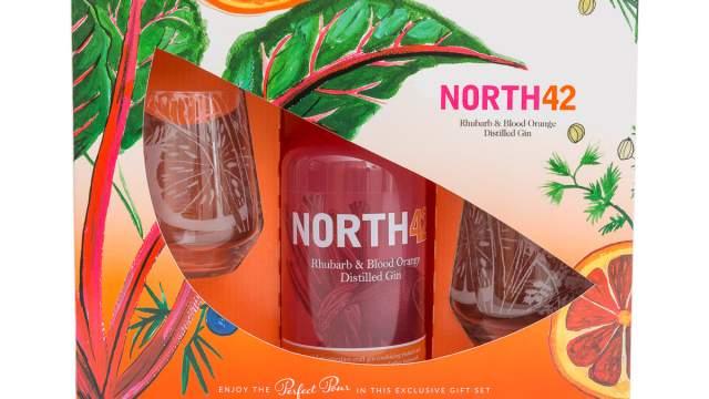 Emma Britton + NORTH42 Gin Limited Edition Glassware Gift Set
