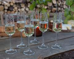 Emma Britton Decorative Glass Designer -Silver Birch Glassware Collection - Etched Flutes