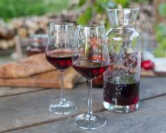 Emma Britton Decorative Glass Designer - Silver Birch Glassware Collection - 2 Wine Glass Gift Set with Matching Carafe