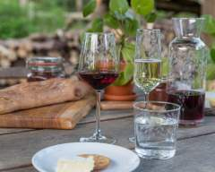 Emma Britton Decorative Glass Designer - Silver Birch Collection - Etched Wine Glasses