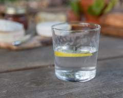 Emma Britton Decorative Glass Designer - Silver Birch Glassware Collection - Etched Tumbler