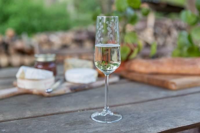 Emma Britton Decorative Glass Designer - Silver Birch Patterned Champagne Flute